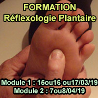 formation-réflexologie